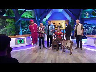German goat Tickling