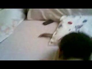 arab egyptian niqab horny