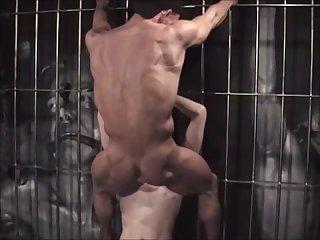 Sex slave 0442