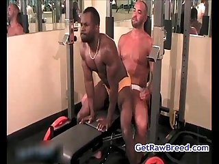 Tyler reed nate storm and caleb lucas Ass fucking action 14 by getrawbreed