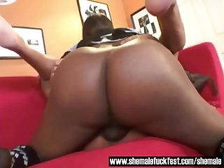 Black Shemale With a BBC dominates a Bald Hunk - Shemale Fuck Fest