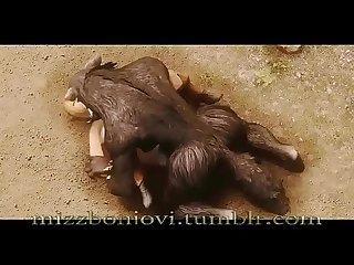 Elfa es follada brutalmente por loba monster 3d