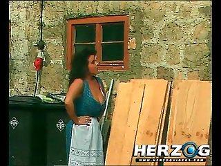herzogvideos ข้อความด่วนทันใจ wald und ( เด มอไฮย์ดี้