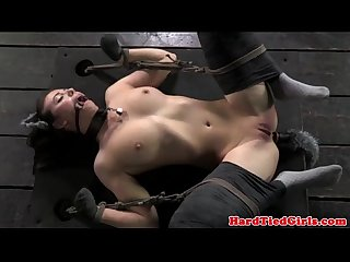 Bonded puppy submissive being obedient