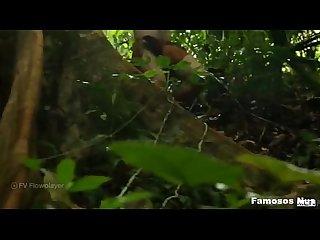 Tarzan a gay Xxx parody parte 1 trailer