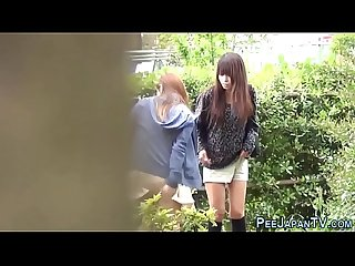 Japanese hos pee outdoors