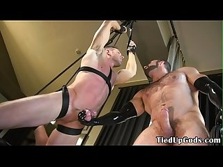 Suspended bdsm sub cock whipped by muscle dom