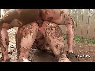 Oil videos