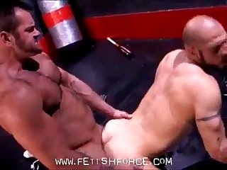Hairy bears aitor crash and tober brandt ultimate anal whacking