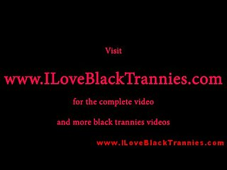 Black tranny shemale interracial sucking