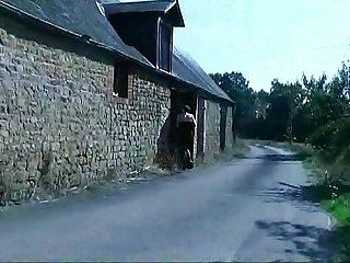 Philippe dujonc Couple violent chez eux par un inconnu