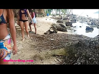 Ameteur tiny thai teen heather deep day at the beach gives deepthroat throatpie swallow
