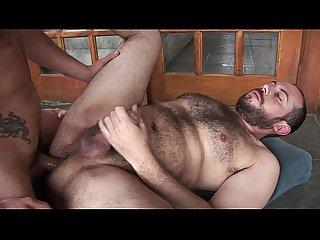 Gay ursos safados brasileiros